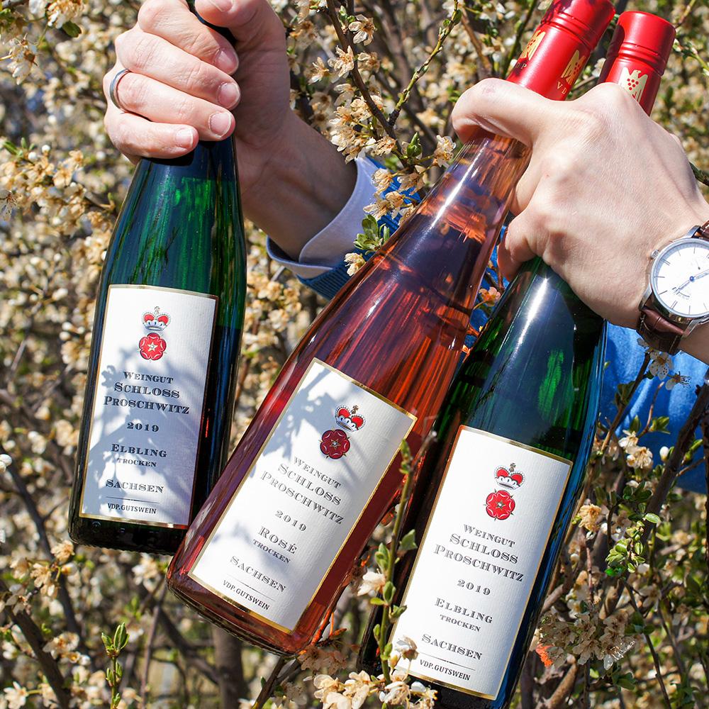 Getränke-Auswahl zu Ihrer Hochzeit auf Schloss Proschwitz