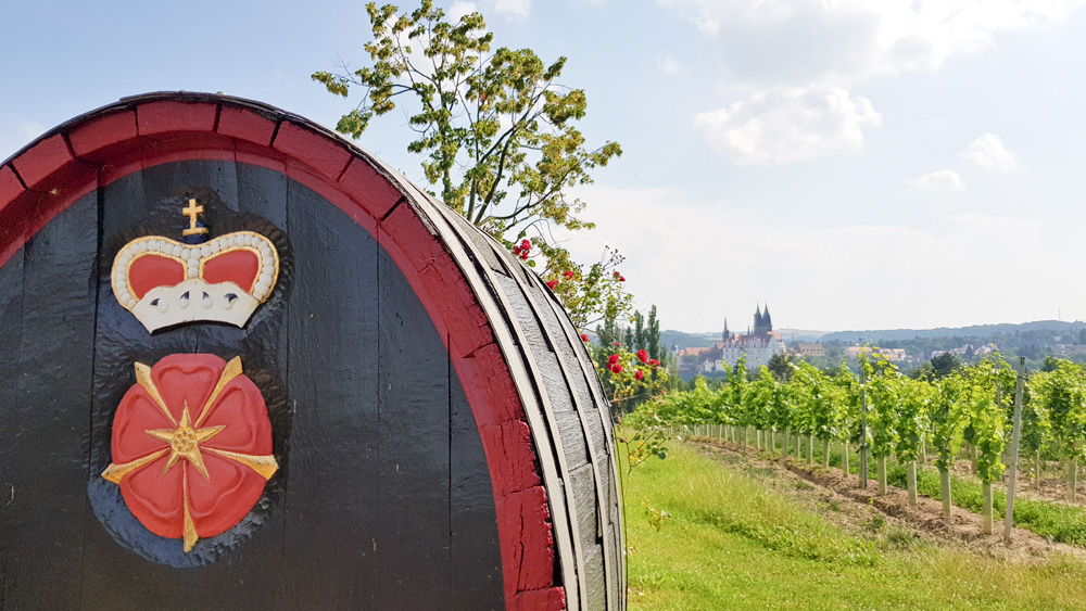 Hochzeit im Weinberg Schloss Proschwitz