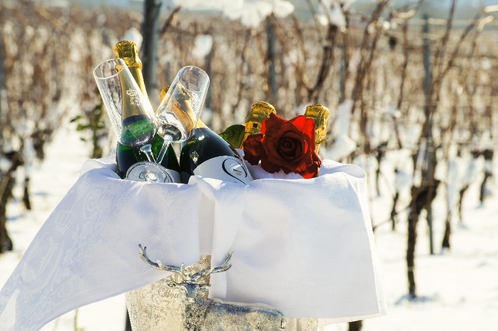 Hochzeit in Winter-Romantik - Schloss Proschwitz