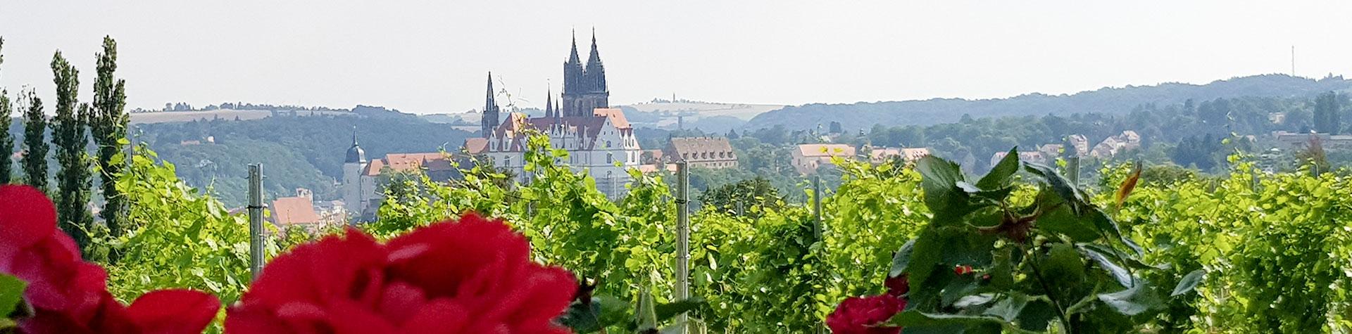 Schloss Proschwitz - Hochzeit im Weinberg